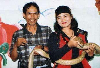 ular_telan.jpg